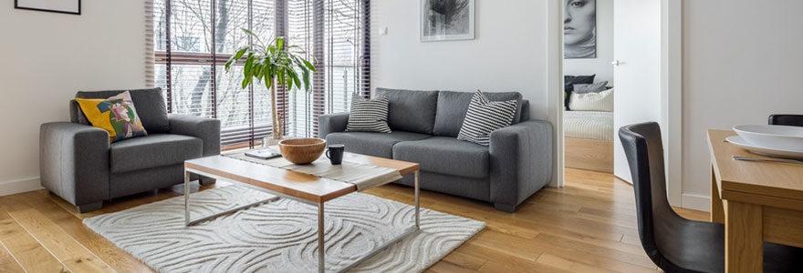 Un appartement de luxe